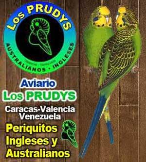 banner-los-prudys3.jpg